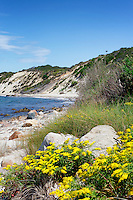 Lamberts Cove Beach, Tisbury, Martha's Vineyard, Massachusetts, USA