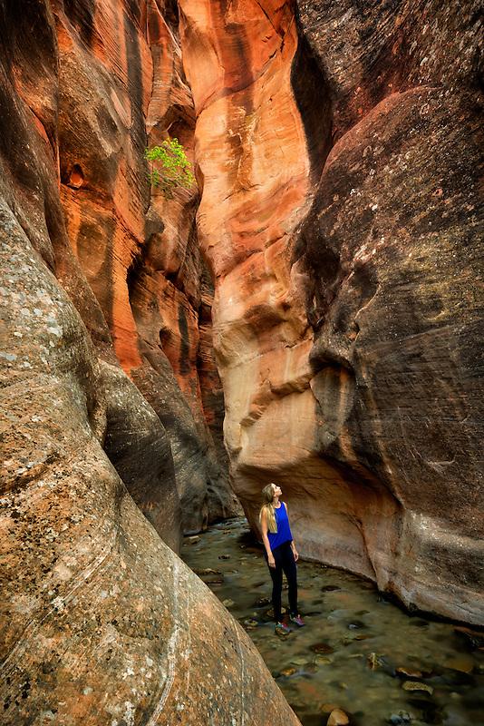 Kanarra Creek Canyon with hiker. Utah. Dixie National Forest
