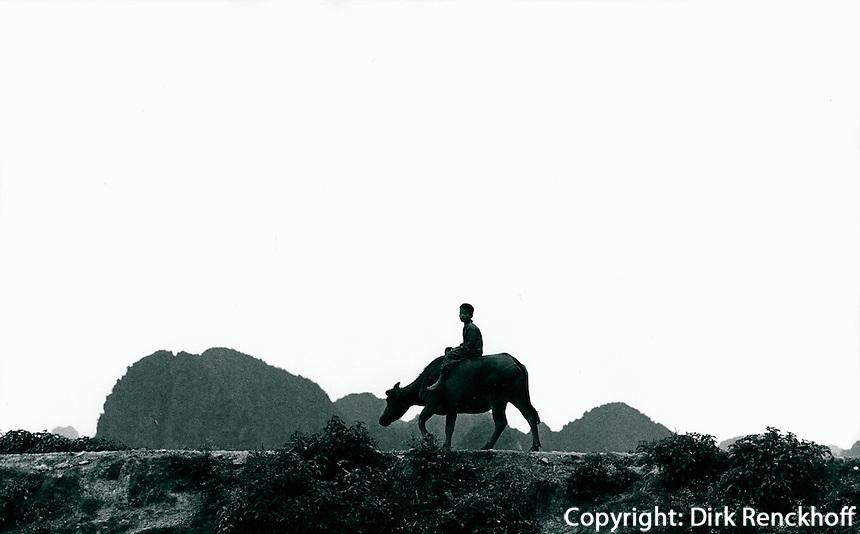 Junge mit Wasserbüffel, Vietnam 1991
