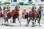 Harness Racing at Waterlea, 24 January