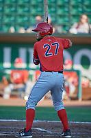 Nonie Williams (27) of the Orem Owlz bats against the Ogden Raptors at Lindquist Field on June 26, 2018 in Ogden, Utah. The Raptors defeated the Owlz 6-5. (Stephen Smith/Four Seam Images)