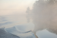 Waves, trees and fog reflected on the intercoastal waterway near Appalatchicola Florida