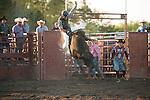 SEBRA - Virginia Beach, VA - 4.26.2014 - Bulls and Action