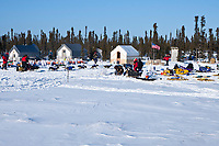 Rick Swenson pulls into the Cripple checkpoint 1/2 way into the race during the 2010 Iditarod