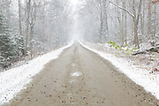 Dusting of snow along Tripoli Road in Livermore, New Hampshire during the autumn months. Completed in 1934, Tripoli Road for most of its length is an unpaved bumpy dirt road that connects Waterville Valley and Woodstock, New Hampshire. This is a seasonal road closed during the winter months.
