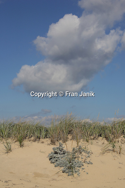 A veiw of South Beach in Martha's Vineyard capturing the beauty of sand dunes with blue sky as clouds drift by on a clear October day.