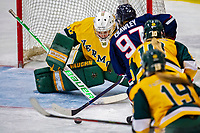 8 February 2020: University of Vermont Catamount Goaltender Natalie Ferenc, a Freshman from Orchard Lake, MI, makes a third period save against the University of Connecticut Huskies at Gutterson Fieldhouse in Burlington, Vermont. The Huskies defeated the Lady Cats 4-2 in the first game of their weekend Hockey East series. Mandatory Credit: Ed Wolfstein Photo *** RAW (NEF) Image File Available ***