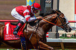 DEL MAR, CA  AUGUST 11: #1 Instagrand, ridden by Drayden Van Dyke, shows his class by demolishing the field winning the Best Pal Stakes (Grade ll) on August 11, 2018, at Del Mar Thoroughbred Club in Del Mar, CA. (Photo by Casey Phillips/Eclipse Sportswire/Getty Images