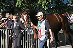 June 7, 2014: Tonalist enters the paddock before the Belmont Stakes. Tonalist, trained by Christophe Clement and ridden by Joel Rosario wins the 146th running of the Grade I Belmont Stakes at Belmont Park , Elmont, NY.   ©Joan Fairman Kanes/ESW/CSM