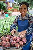 Guizhou Province, China.  Han Woman Selling Sweet Potatoes.