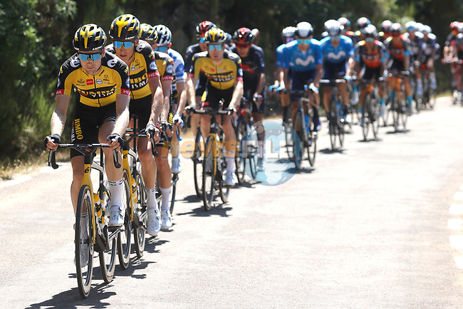 The peloton led by Jumbo-Visma during Stage 3 of La Vuelta d'Espana 2021, running 202.8km from Santo Domingo de Silos to Picon Blanco, Spain. 16th August 2021.    <br /> Picture: Luis Angel Gomez/Photogomezsport | Cyclefile<br /> <br /> All photos usage must carry mandatory copyright credit (© Cyclefile | Luis Angel Gomez/Photogomezsport)