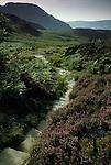 The Roman Steps, Nr Llanbedr Gwynedd Wales.