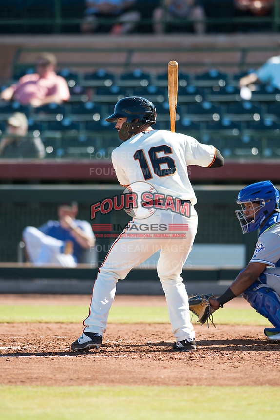 Scottsdale Scorpions designated hitter Matt Winn (16), of the San Francisco Giants organization, at bat during an Arizona Fall League game against the Surprise Saguaros at Scottsdale Stadium on October 26, 2018 in Scottsdale, Arizona. Surprise defeated Scottsdale 3-1. (Zachary Lucy/Four Seam Images)