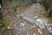 Water bar, seen here in May 2015, that appears to serve no purpose along the Mt Tecumseh Trail in Waterville Valley, New Hampshire. Trail stewardship groups suggest only needed stone structures that benefit the trail should be built along a trail. This drainage was built in 2012.
