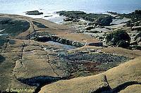 ON06-040z  Ocean - tidepool and rocks - Acadia National Park, Maine