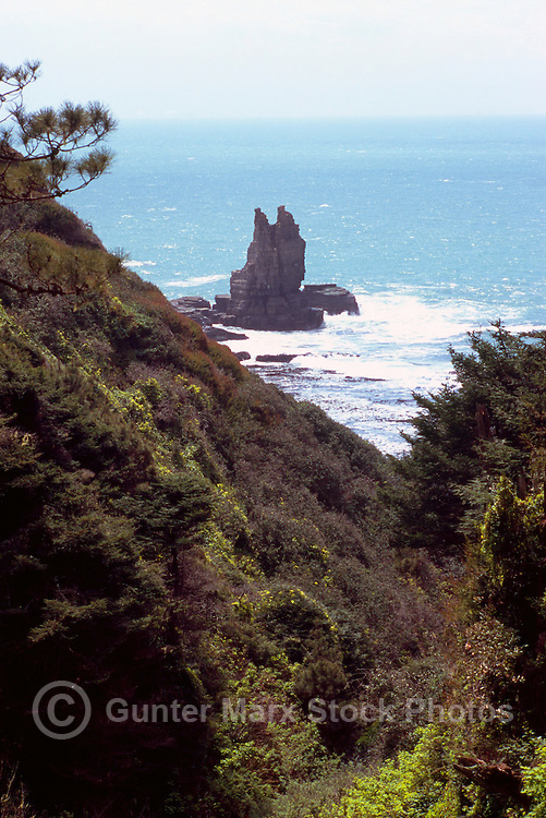 Seastack along Pacific West Coast at Gualala, California, USA