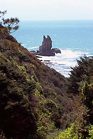 Seastack along Pacific West Coast at Gualala, California, USA