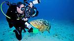 Photographer and Goliath Grouper, Key Largo, Florida