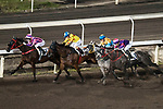 #13 Jack Wong Ho-nam (L) leading the race number 5 riding Five Stars Agent at Sha Tin racecourse on November 1, 2017 in Hong Kong, China. Photo by Marcio Machado / Power Sport Images