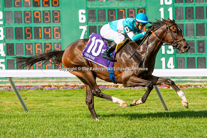 JULY 17, 2021: Tribhuvan (FR), #10, ridden by Flavien Prat, wins the  Gr. 1 United Nations Stakes, going 1 3/8  mile on the turf, at Monmouth Park in Oceanport, NJ.  Sue Kawczynski/Eclipse Sportswire/CSM