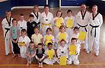 Sheild Taekwondo