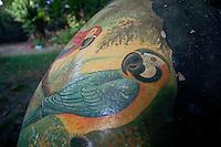 Pintada com araras, o casco  de tartaruga da Amazônia era vendido como lembrança turística na região até a década de 1980.<br /> Foto Paulo Santos<br /> 2014