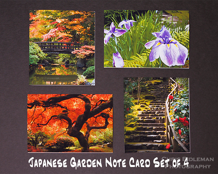 """Japanese Garden note cards.  Set of 4 cards that are 4.25"""" x 5.5"""" in size.  Blank inside and includes mailing envelope."""