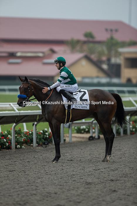 AUG 2,2014:Iotapa,ridden by Joseph Talamo,wins the Clement L. Hirsch Stakes at Del Mar in Del Mar,CA. Kazushi Ishida/ESW/CSM