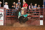 SEBRA - Blackstone, VA - 6.21.2014 - Bulls & Action