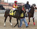 Amerigo Vespucci posy parade_ Revolutionary (#2) with Javier Castellano splits horses to win the 133rd running of the Grade 3  Withers Stakes for 3-year olds, going 1 1/16 on the inner dirt, at Aqueduct Racetrack.  Trainer Todd Pletcher.  Owner Winstar Farms