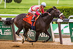 New York, NY - MAY 14: Unified, #7  with Jose Ortiz aboard. wins 62nd running of the Peter Pan Stakes at Belmont Park on May 14, 2016, in Elmont, NY. (Photo by Sue Kawczynski/Eclipse Sportswire/Getty Images)
