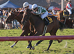 Centre Court with jockey Julien Leparoux(6) outfinishes Kittens Point in the Honey Fox(G2T) at Gulfstream Park, Hallandale Beach Florida. 03-15-2014