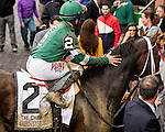 October 3, 2015:  Greenpountcrusader with Joe Bravo win the 'Win & You're In' Grade I Champagne Stakes for 2-year olds, going 1 mile at Belmont Park.  Trainer Dominck Schettino. Owner St. Elias Stable, Meb Racing Stable. Sue Kawczynski/ESW/CSM