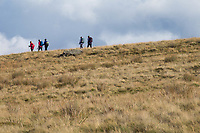 6.10.2020 Ramblers on the North Yorkshire Moors<br /> ©Tim Scrivener Photographer 07850 303986<br />      ....Covering Agriculture In The