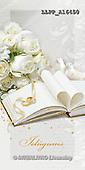 Maira, WEDDING, HOCHZEIT, BODA, paintings+++++,LLPPA16450,#W#