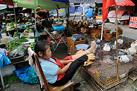 "A vendor selling pigeons and chickens in an open market in Shanghai, China in this file photo. China's wild animal markets, where live wild animals and reared animals are sold are the source of many viruses that mutate as they ""jump"" from animals to humans. The coronavirus COVID-19 is thought to have originated in an animal market in China. <br /> <br /> By Sinopix Photo Agency"