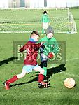 Drogheda Boys V Termonfeckin Green U-9