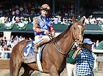 LEXINGTON, KY - April 15, 2017.  #3 Senior Investment and jockey Channing Hill (outside red, blue and white stars) win the 36th running of The Stonestreet Lexington Grade 3 $200,000 for owner Fern Circle Stables and trainer Kenneth McPeek at Keeneland Race Course.  Lexington, Kentucky. (Photo by Candice Chavez/Eclipse Sportswire/Getty Images)