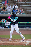 Jhonkensy Noel (29) of the Lynchburg Hillcats at bat against the Myrtle Beach Pelicans at Bank of the James Stadium on May 22, 2021 in Lynchburg, Virginia. (Brian Westerholt/Four Seam Images)