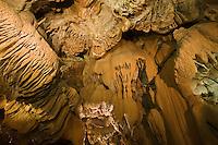 Europe/France/Midi-Pyrénées/46/Lot/Padirac: Gouffre de Padirac - détail du plafond  de la Salle du Grand Dôme et ses stalactites