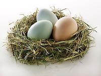 Cotswold Legbar organic free range chicken eggs