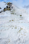 Travetine Steps and geo-thermal features. Mammoth Hot Springs, Yellowstone National Park, Wyoming, USA. January