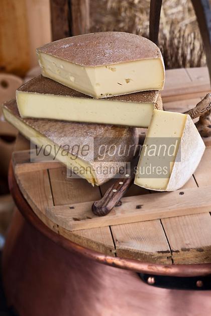 Europe/Suisse/Valais/Troistorrents:  Fromages d'alpage à raclette à La Cavagne - Magasin de producteurs fermiers