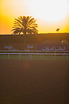 MEYDAN,DUBAI-MARCH 25: Sunrise at 2nd turn at Meydan Racecourse on March 25,2016 in Meydan,Dubai (Photo by Kaz Ishida)