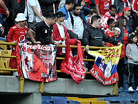 BOGOTÁ-COLOMBIA, 12-01-2020: Hinchas de América de Cali, animan a su equipo, durante partido entre Millonarios y América de Cali, por el Torneo ESPN 2020, jugado en el estadio Nemesio Camacho El Campin de la ciudad de Bogotá. / Fans of America de Cali, cheer for their team during a match between Millonarios and America de Cali, for the ESPN Tournament 2020, played at the Nemesio Camacho El Campin stadium in the city of Bogota. Photo: VizzorImage / Luis Ramírez / Staff.