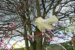 Clooties hanging in tree   England. This tree is just behind the Coldrum Long Barrow stones at Trottiscliffe. Kent.