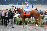 El Padrino (no. 7), ridden by Javier Castellano and trained by Todd Pletcher, wins the 39th running of the grade 2 Risen Star Stakes for three year olds on February 25, 2012 at Fair Grounds Race Course in New Orleans, Louisiana.  (Bob Mayberger/Eclipse Sportswire)