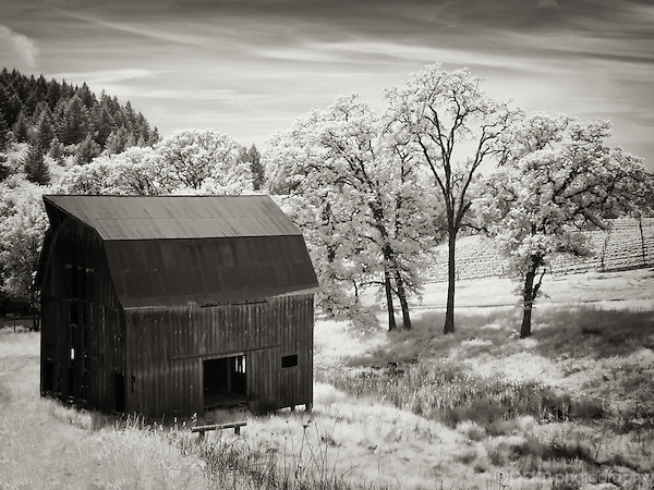 Infrared image of old barn with trees