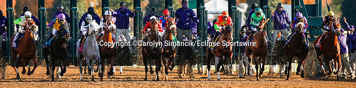 November 7, 2020 : Horses launch from the gate during the Longines Distaff on Breeders' Cup Championship Saturday at Keeneland Race Course in Lexington, Kentucky on November 7, 2020. Carolyn Simancik/Breeders' Cup/Eclipse Sportswire/CSM