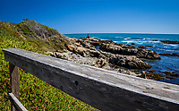 The handrail of a wooden footbridge along the trail at Bean Hollow State Beach provides a convenient resting point to stop and view the rocky shoreline, pock-marked with tafonia formations, and the Pacific ocean stretching to the horizon.